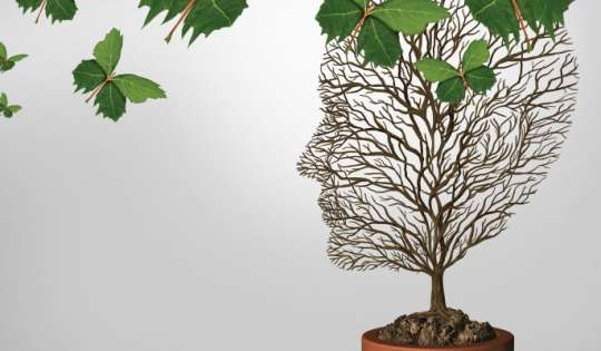 Psicologia ambientale, sostenibilità e comportamenti ecologici: come vengono influenzate le persone ad adottare atteggiamenti sostenibili nel risparmio all'energia.